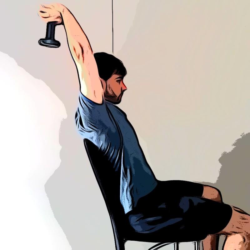 Extensions verticales triceps - Etape 3