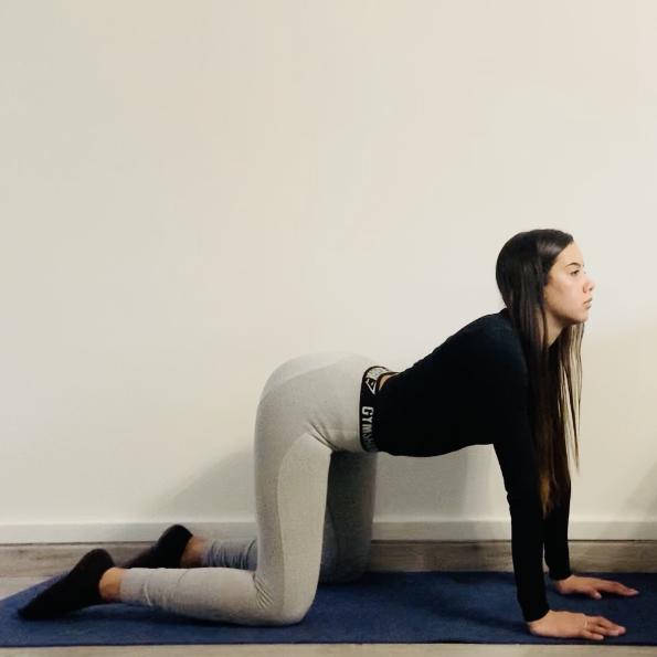 La posture du chat-vache ou Mārjārrnāsana Mukha - Yoga