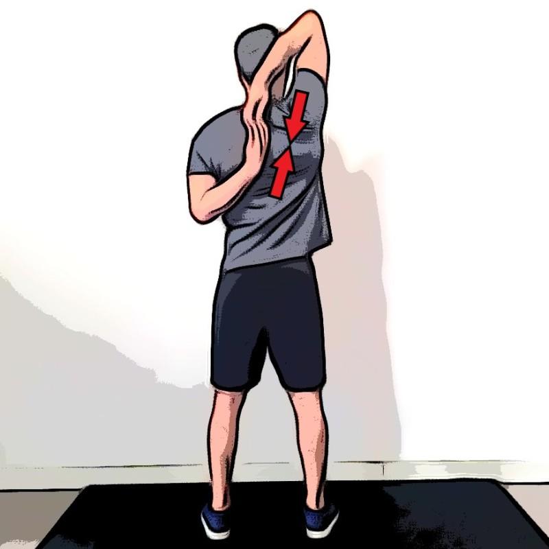 Étirement deltoïdes bras derrières le dos - Etape 2