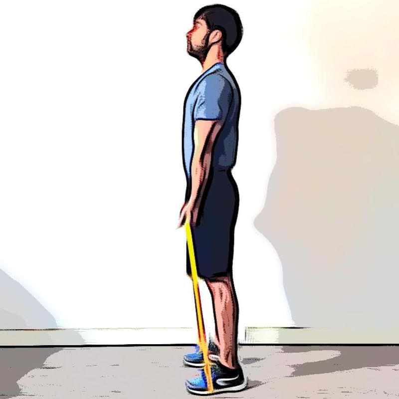 Curl biceps avec élastique - Etape 1