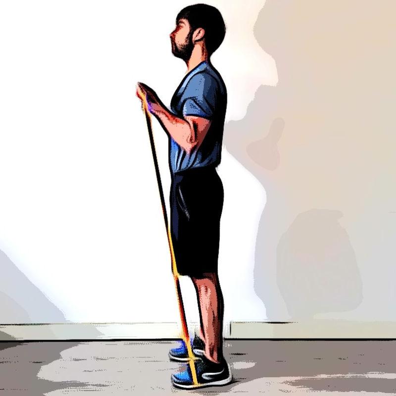 Curl biceps avec élastique