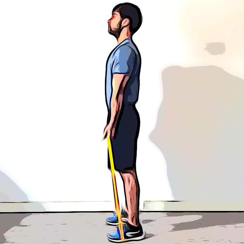 Curl biceps avec élastique - Etape 3
