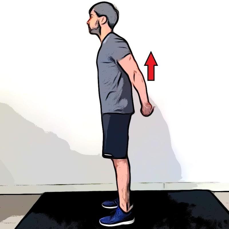 Étirement des deltoïdes mains jointes dans le dos - Etape 2